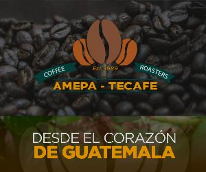amepa-cafe